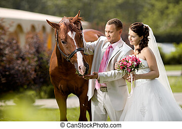 newly married couple stand with beautiful big horse on ...