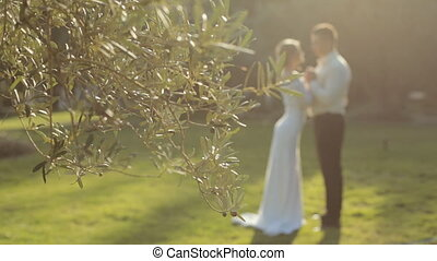 Newly married couple standing in the park next to the olive...