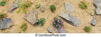 Newly planted rockery garden. Rock garden top view banner.
