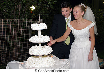 Newlywed couple cutting cake