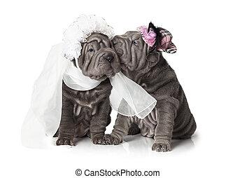 newlywed