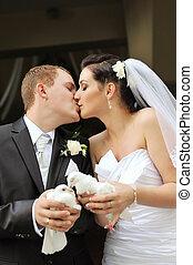 newlyweds, 鴿子
