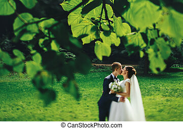 Newlyweds kiss standing on the green lawn