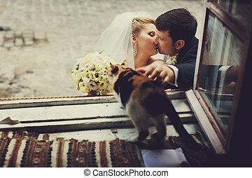 Newlyweds kisses while cat smells bride's bouquet