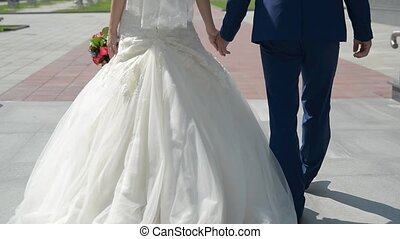 Newlyweds walk in the park, the view from the back