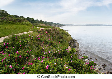 Newport Rhode Island Shoreline - The coast of Newport Rhode ...