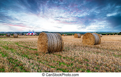 Newquay at Harvest Time - Hay bales at harvest time in a...