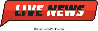 News icon, flat style.