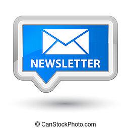 Newsletter prime cyan blue banner button