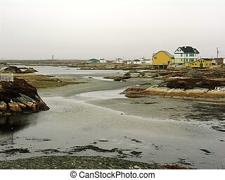 Newtown at low tide - grey foggy day in the outport...