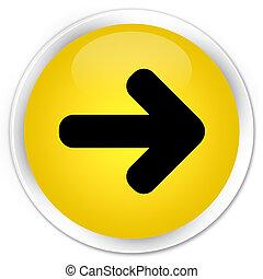 Next arrow icon premium yellow round button