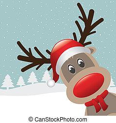 nez, chapeau, s, rudolph, renne, rouges