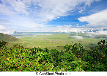 Ngorongoro crater area in Tanzania - Aerial view of ...