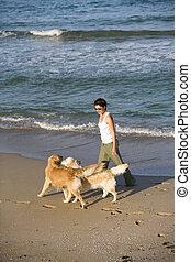 niña, ambulante, ella, perros