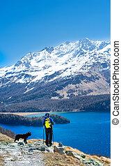 niña, en, excursionismo, montaña, con, ella, fiel, perro