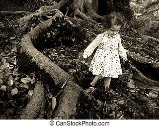 niña, paseos, debajo, un, gigante, árbol viejo