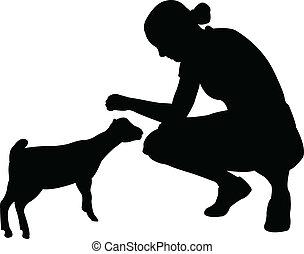 niña, poco, goat