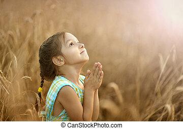 niña, ruega, en, campo de trigo