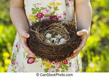 niña, tenencia, poco, huevos de pascua, nido