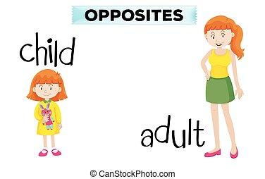 niño adulto, wordcard, contrario