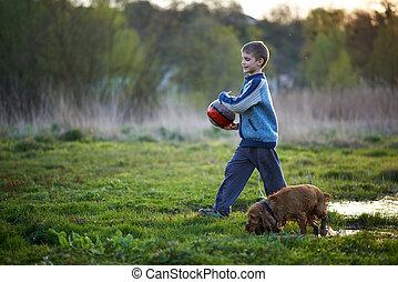 niño, con, un, pelota, perro caminante