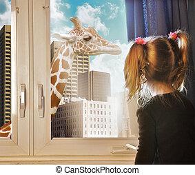 niño, el mirar, jirafa, sueño, en, ventana