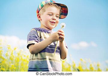 niño, el suyo, proceso de llevar, reír, manos, blow-ball