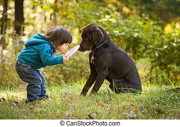 niño joven, jugar al atrapa la presa, con, perro