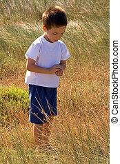 niño, joven, naturaleza