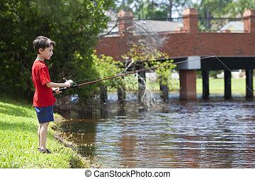 niño joven, pesca, en, un, río