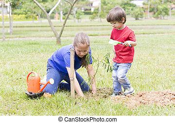 niño, niña, feliz, plantación