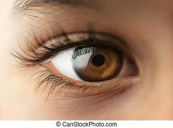 niño, ojo humano, -, macro, -, cierre