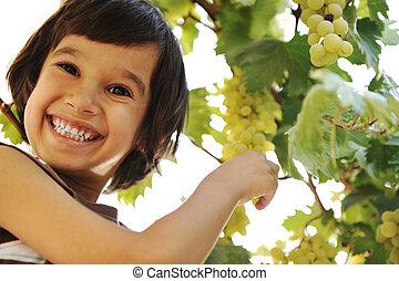 niño, plano de fondo, vid, preteen, uvas, sonriente