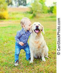 niño, poco, dorado, parque, perro, niño, besar, pasto o césped, perro cobrador
