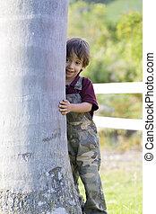 niño, poco, el abrazar del árbol, feliz