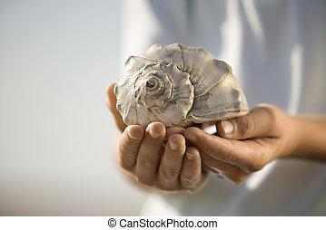 niño, seashell., tenencia