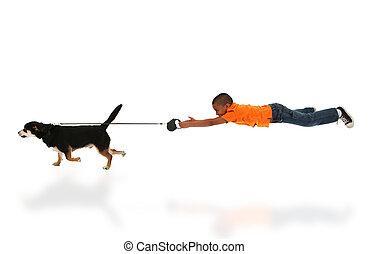 niño, toma, caminata del perro, niño negro, guapo, feliz