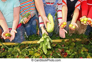 niños, asimiento, vegetales