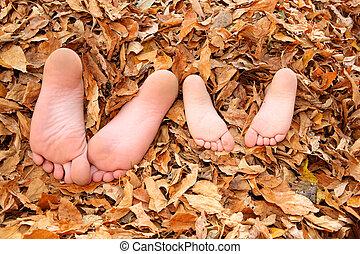 niños, enterrado, en, permisos de otoño