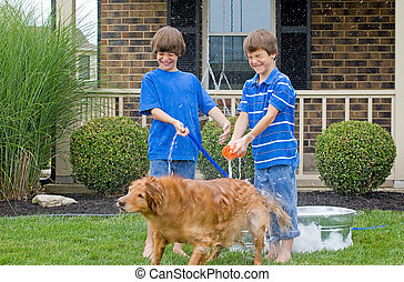 niños, lavado, perro