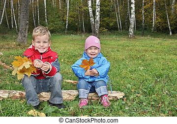 niños, sentarse, en, otoño, parque