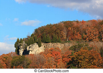 Niagara Escarpment covered by trees. - Trees colored in...