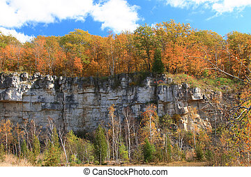 The rock structure of Niagara Escarpment with forest on the top and in front painted by Autumn brush.