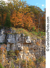 Niagara Escarpment rock structure and growing up over and in fron of it trees bushes and grass.
