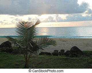 Nicaragua Sunrise
