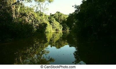 Nice Amazon River - Shipping, Amazon River