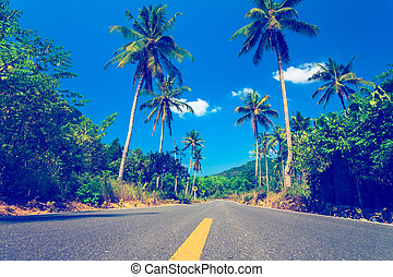 Nice asfalt road with palm trees against the blue sky and...
