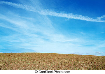 Nice autumn field with clear horizont and blue sky