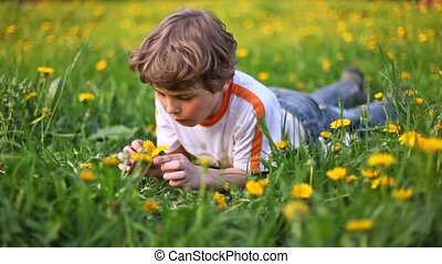 Nice boy lie on green lawn covered with dandelions