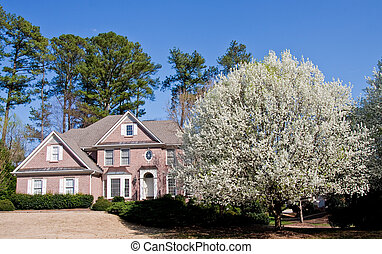 Nice Brick House with Blooming Pear Tree